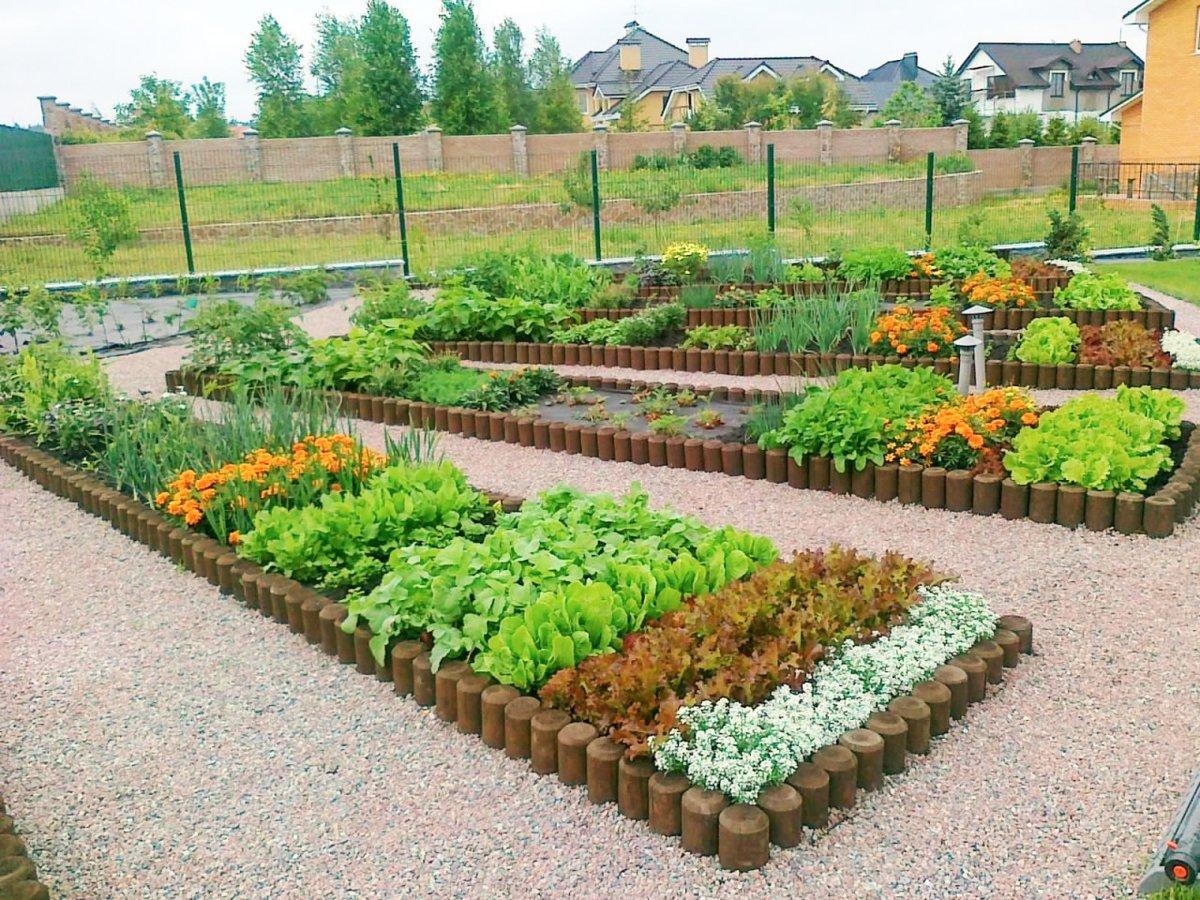 Как красиво сделать свой огород красивым своими руками