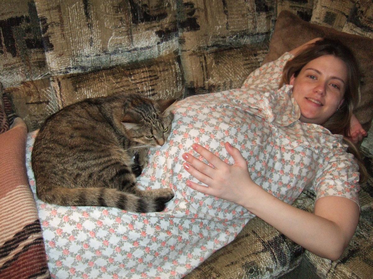 К чему приходит беременная кошка в дом примета