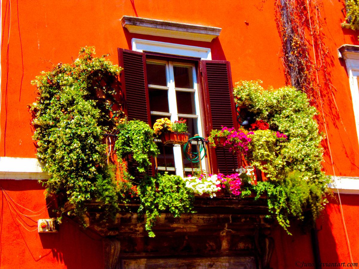Украшаем балкон цветами фото