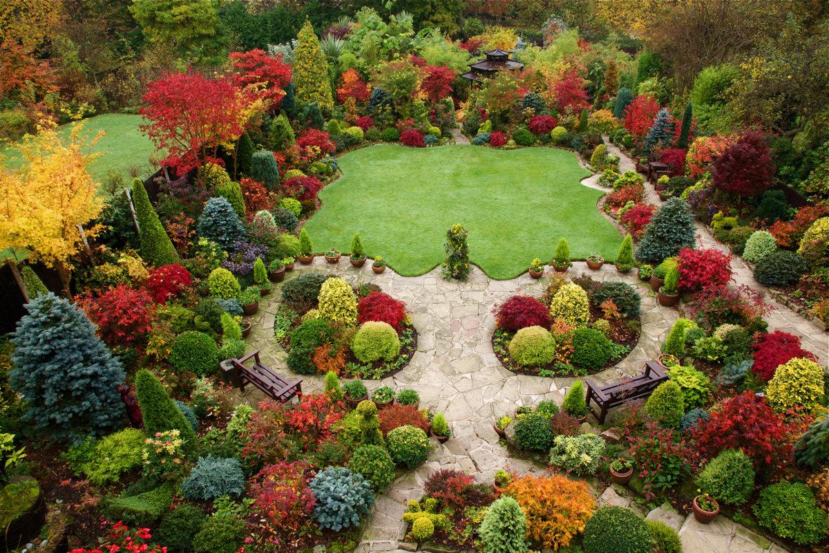 Ландшафтный дизайн с названиями растений