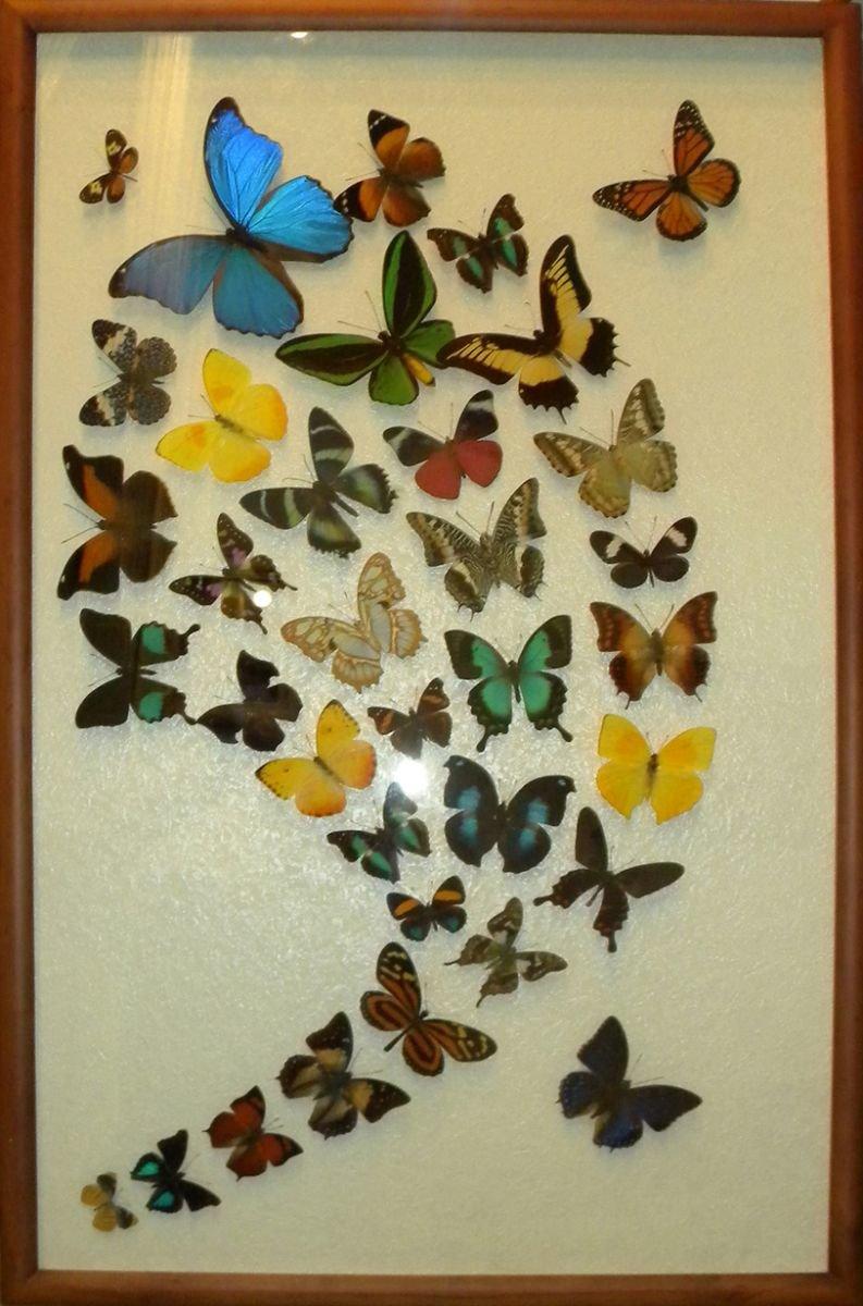 Бабочки в рамке на стену своими руками 15