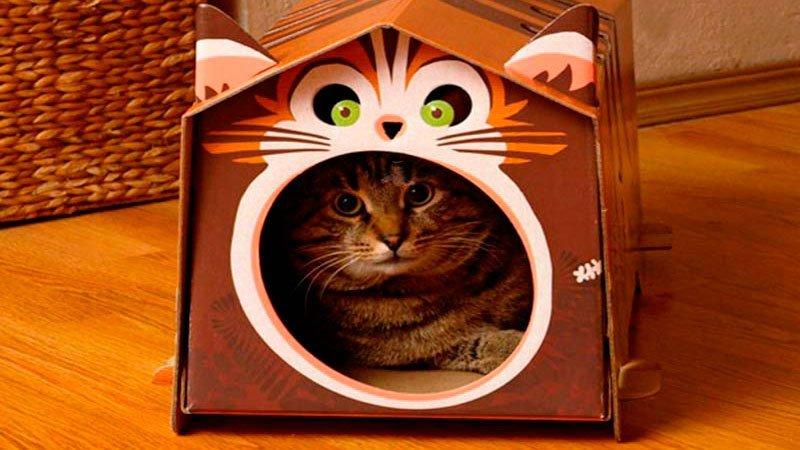 Домик для кошки своими руками из картонной коробки пошаговое