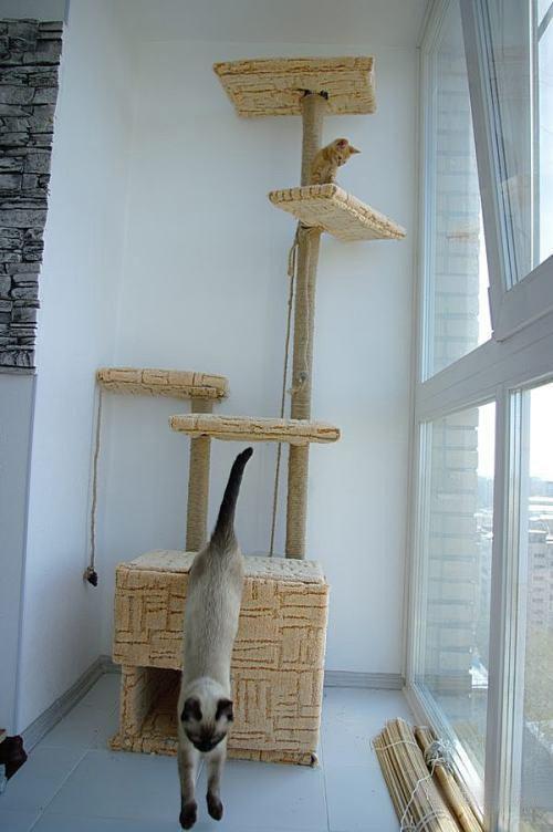 Как сделать домик для кошки своими руками из картона