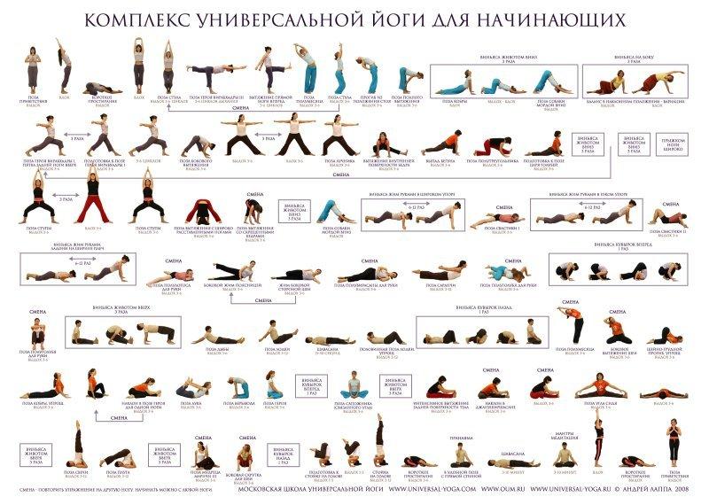 Как создать хайп проект самому инструкция йога
