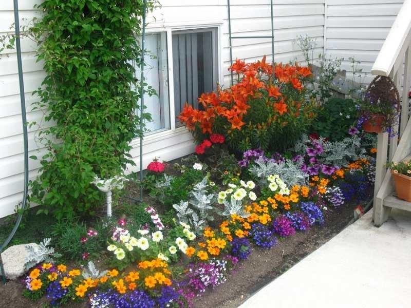 Как красиво посадить цветы перед домом 189