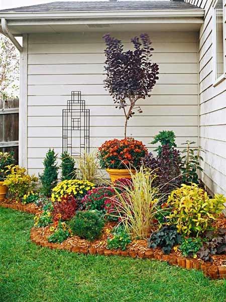 Сад около дома своими руками фото 89