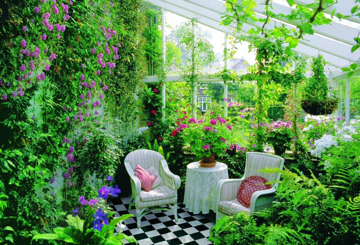 Зимний сад своими руками на участке 38