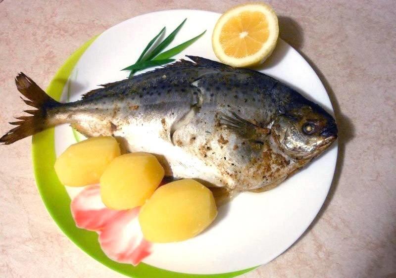 Как приготовить масляную рыбу с
