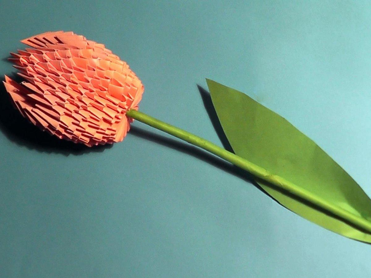 Цветы из бумаги в технике квиллинг: фото, как сделать