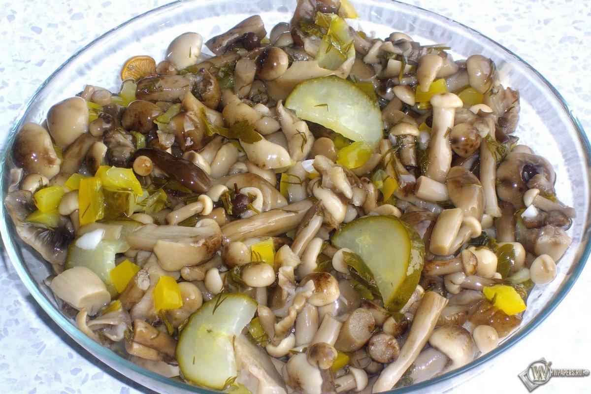 Грибной салат из шампиньонов рецепт