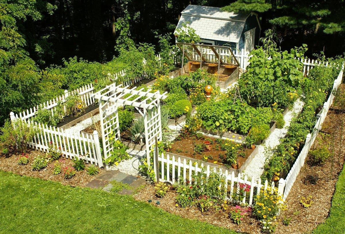 Дизайн-проект огорода частного дома 23