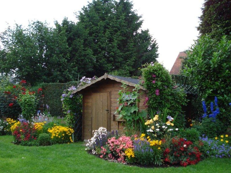 Уютный сад фото новинки
