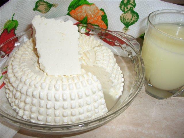 Сыр с кислого молока в домашних условиях 88