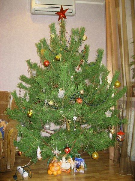Как украсить елку в 2013 в домашних условиях