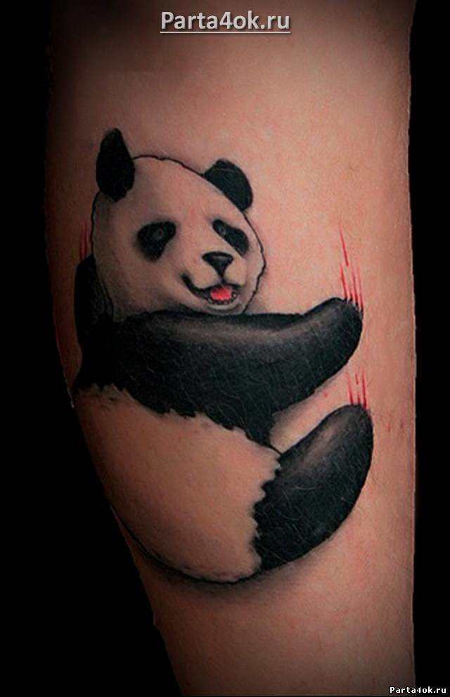 Тату панды на ноге фото
