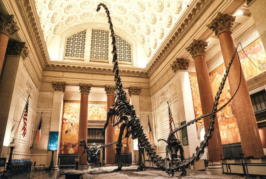 Tangerine history museum nyc agenda
