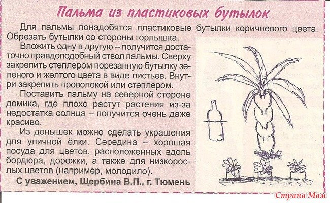 Пошаговая инструкция с как сделать пальму