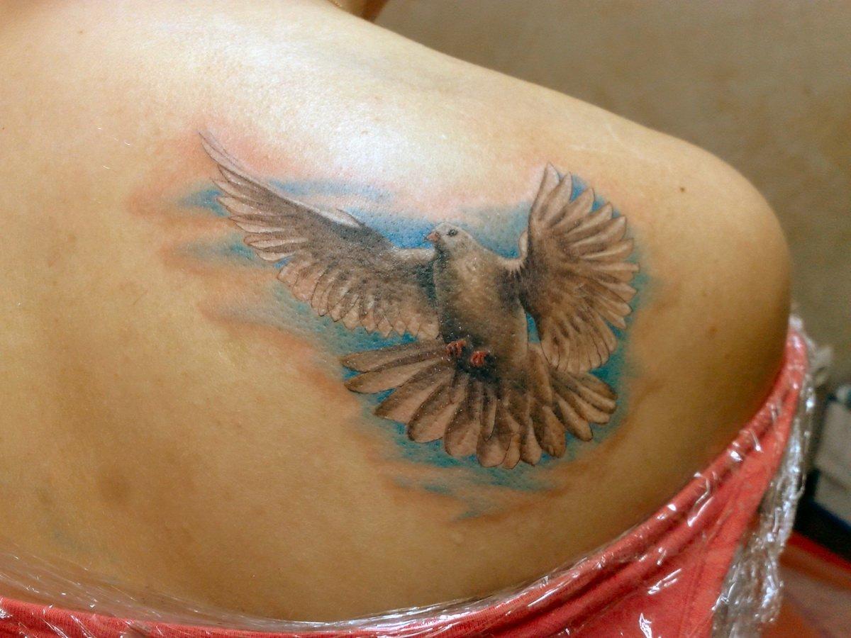 У кого есть тату в виде голубя