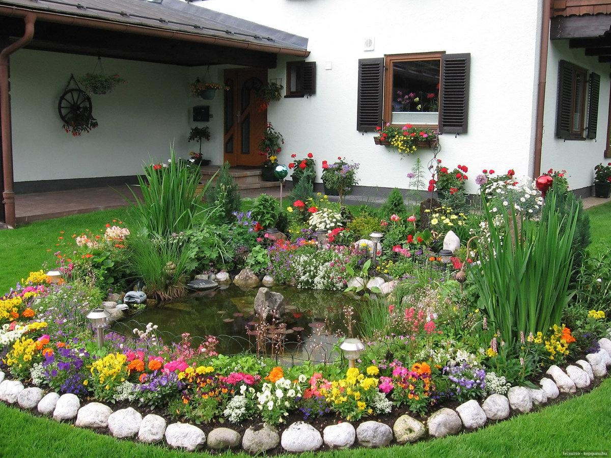 Фото палисадников с цветами