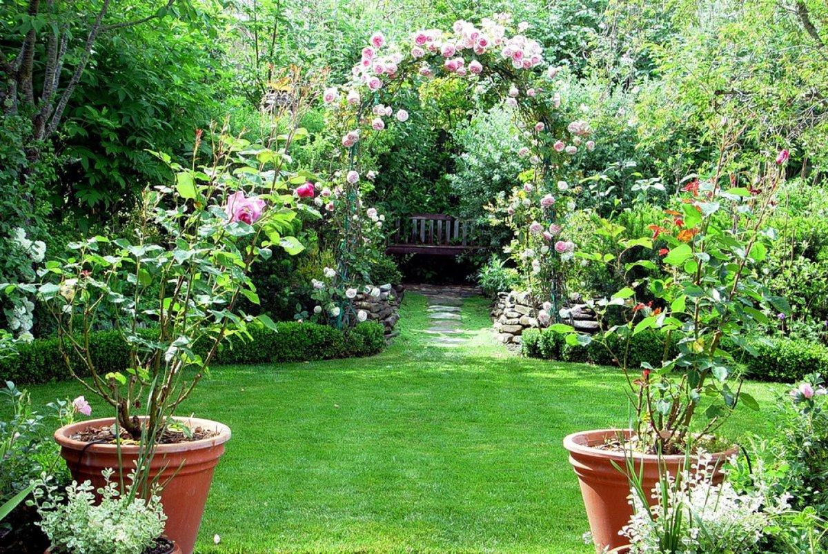Посадить сад своими руками 870