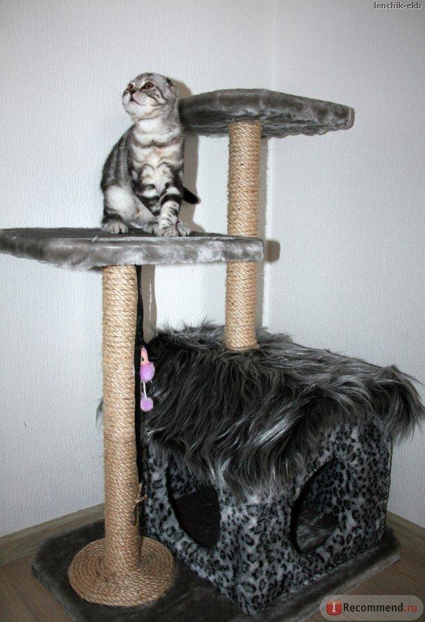 Когтеточка для кошек своими руками пошагово 2