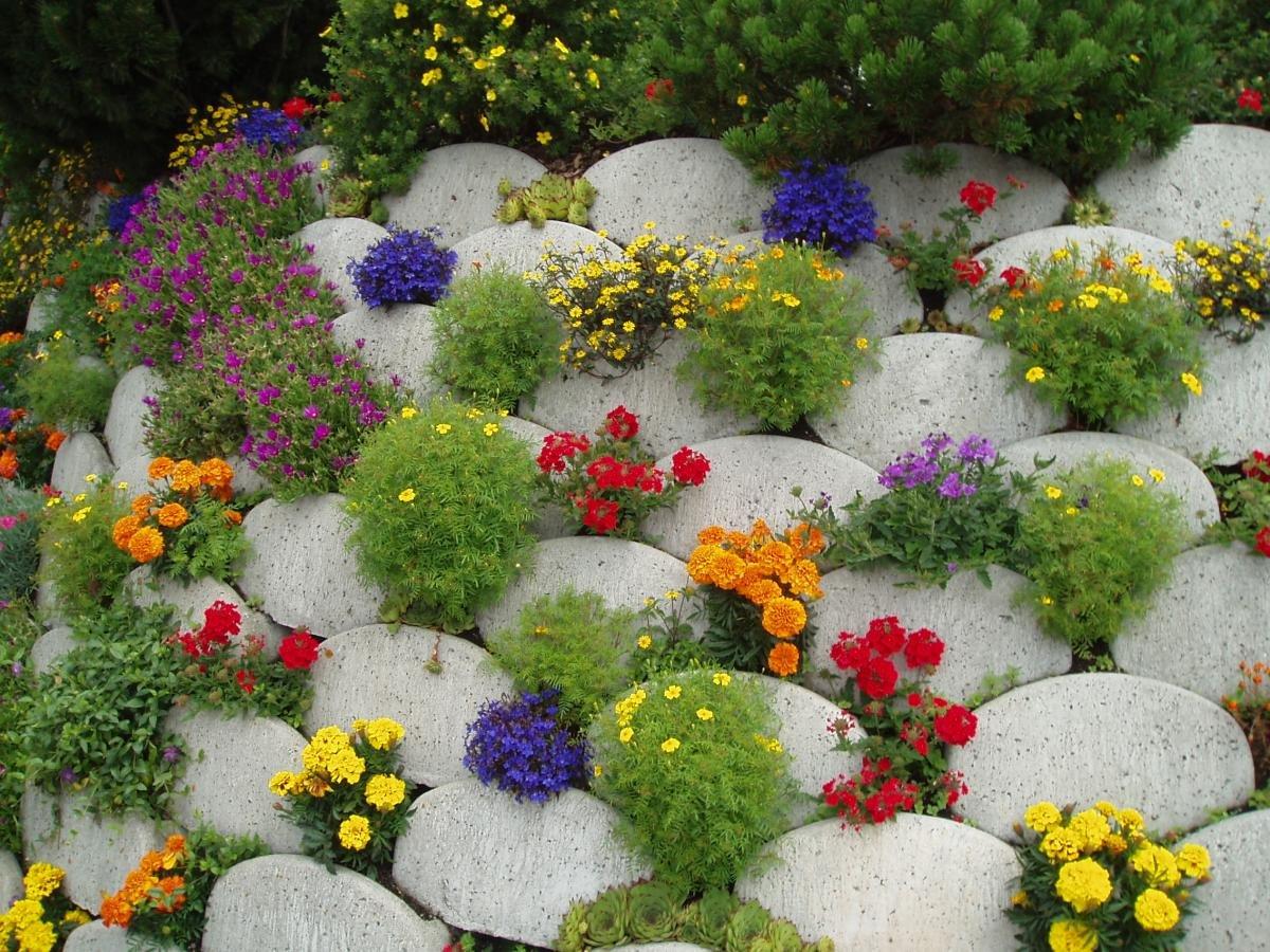 Цветники и клумбы своими руками на даче из подручного материала
