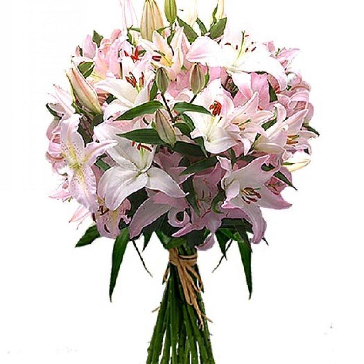 Фото цветов из лилий