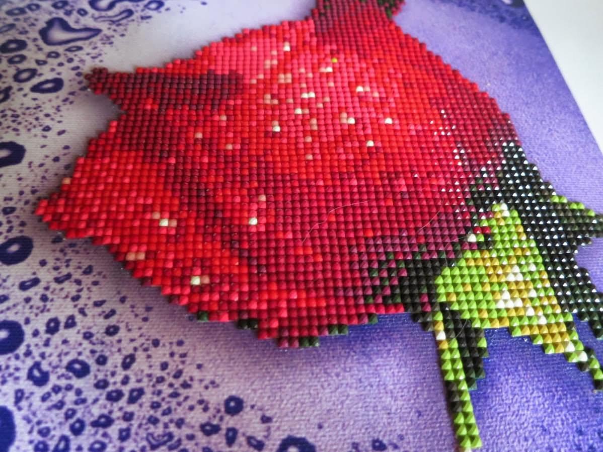 Как сделать алмазную вышивку по фотографии