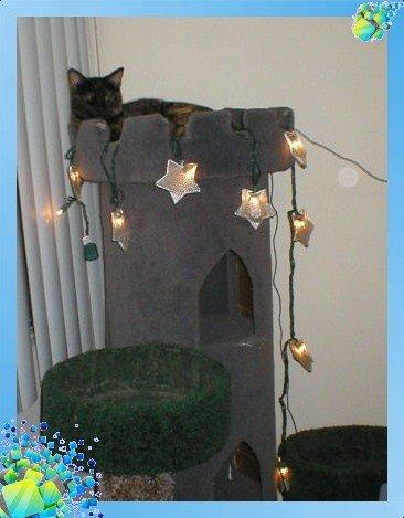Замок для кошек своими руками
