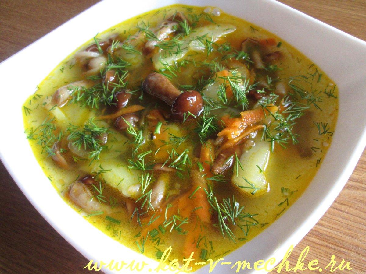 Грибной суп из вешенок рецепт пошагово
