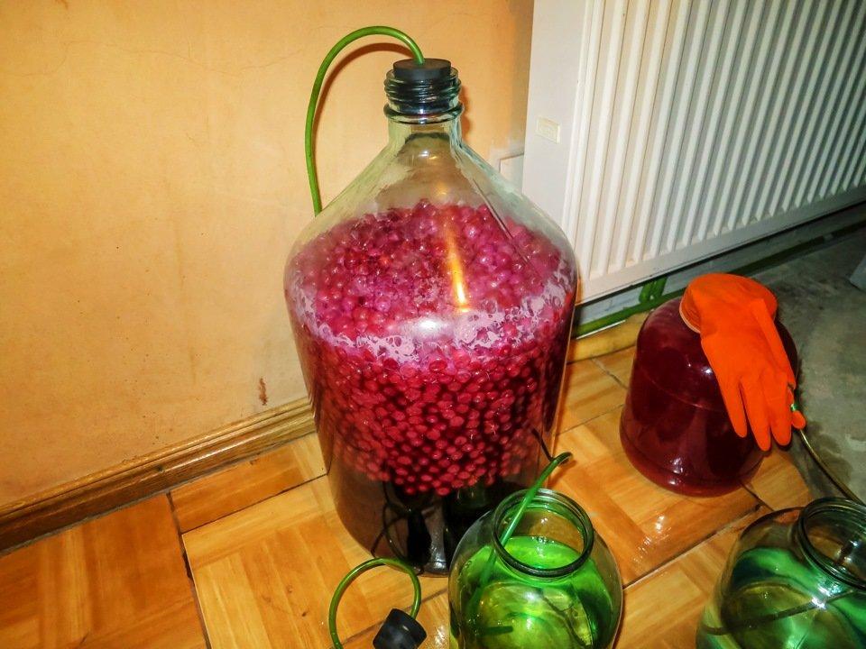 Как сделать домашнее вино из вишни в домашних
