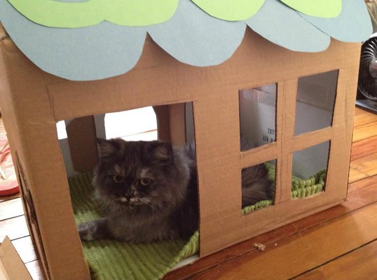 Видео как сделать домик для кошки из коробки