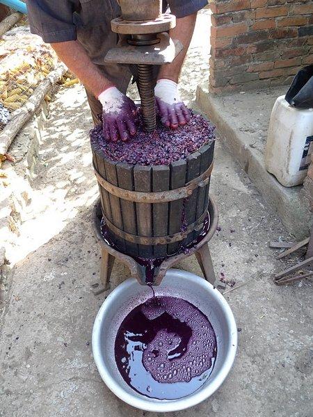 Виноградное вино в домашних условиях своими руками 2