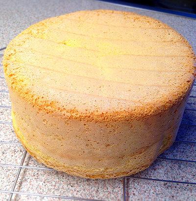 Бисквит на 10 яиц рецепт с пошагово