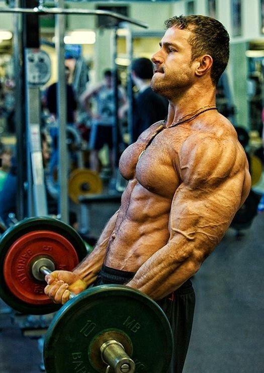 Как сделать свои мышцы рельефным 741