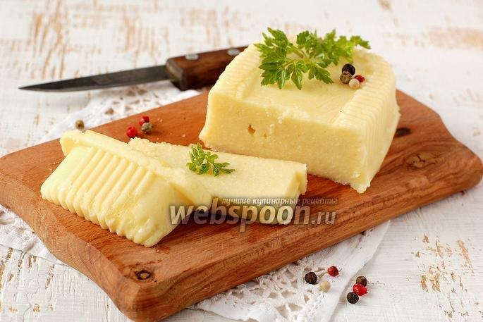 Плавленый сыр своими руками из молока