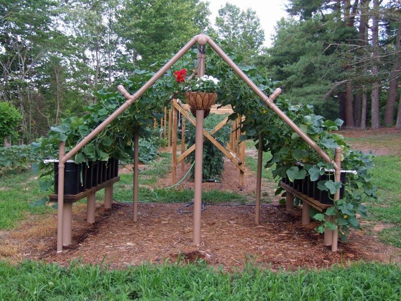 Самоделки для сада и огорода