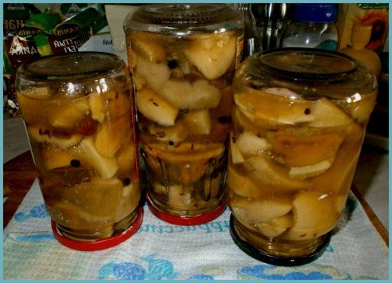 Вкусные грибы на зиму рецепты с фото