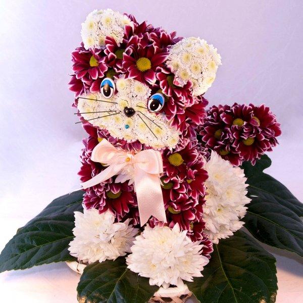 Кот из цветов