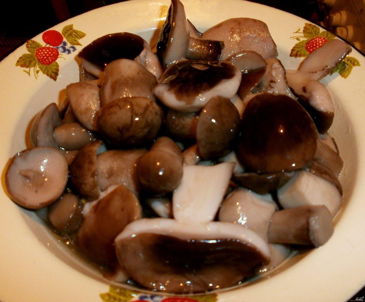 Как приготовить грибы обабки рецепт на зиму