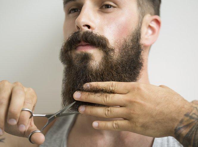 Почему так стала модна борода