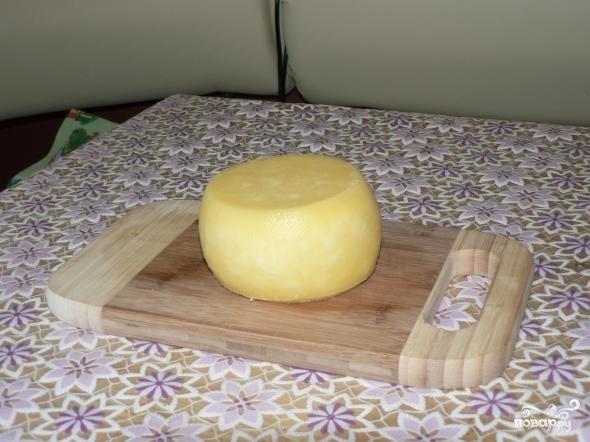 Твёрдый сыр в домашних условиях рецепт с фото
