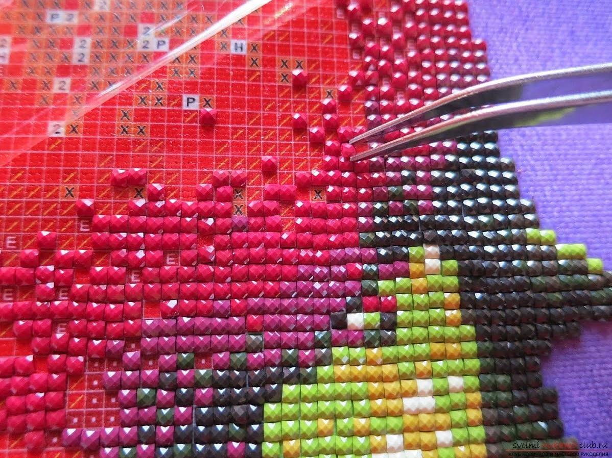 Идеи оформления стен. тарелками Дизайн интерьера