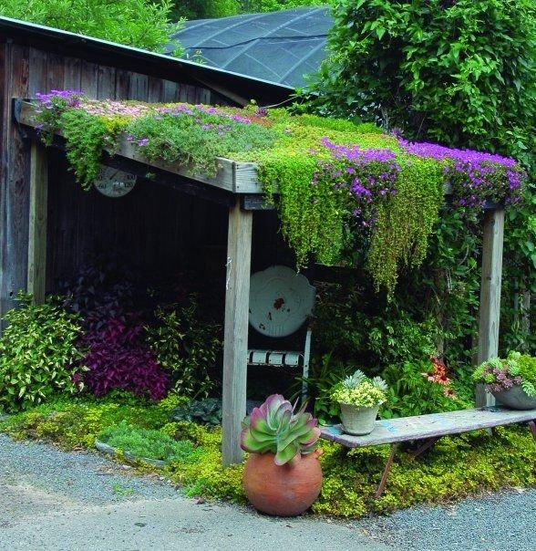 Уютные уголки в саду своими руками фото 57