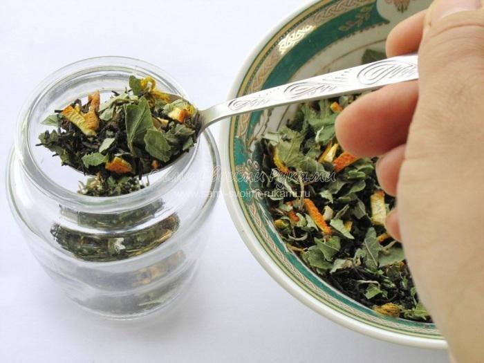 Сбор чая своими руками