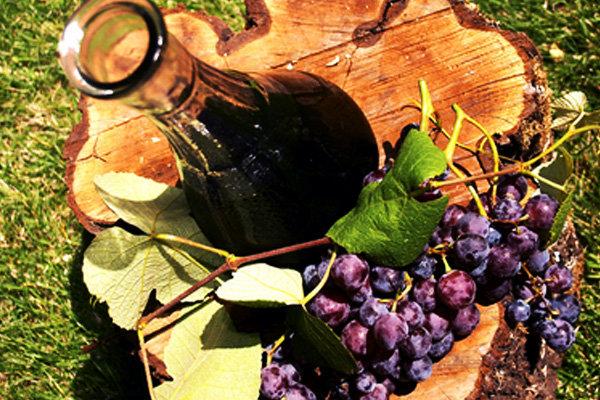 Как сделать вино с простого винограда 812