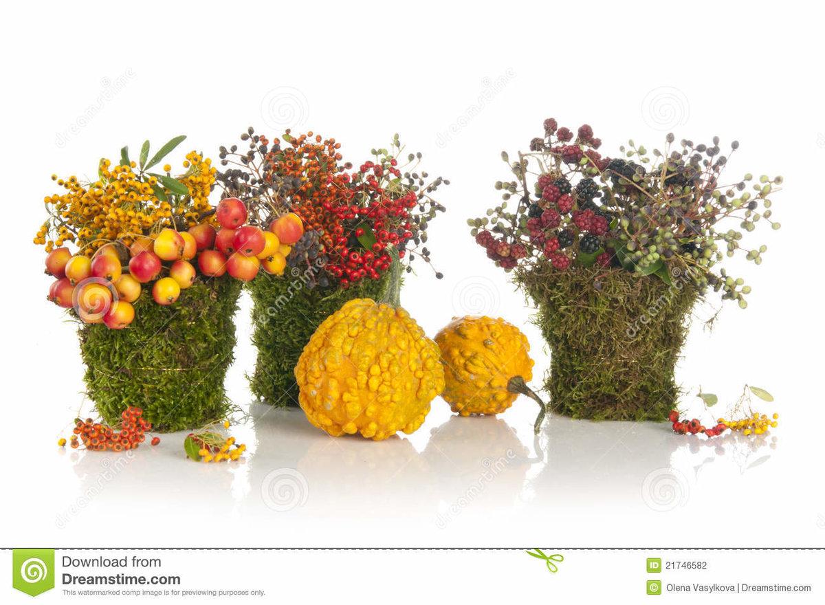 Композиция из цветов своими руками на выставку в детский сад