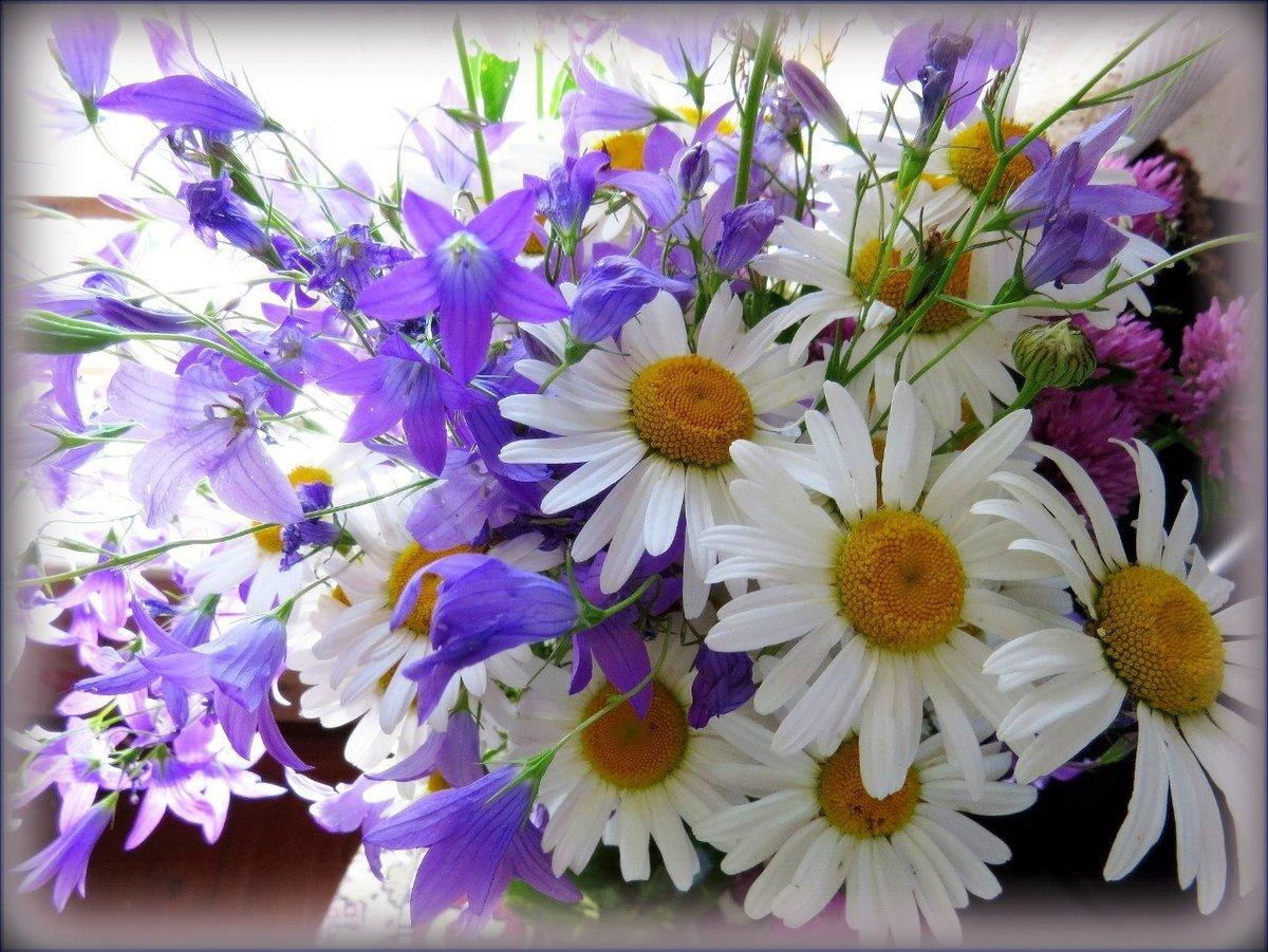 Букет из полевых цветов открытка