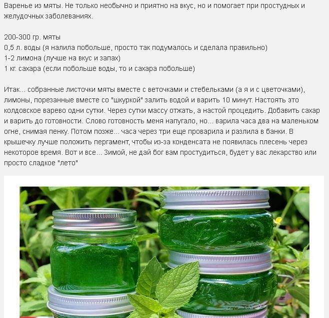 Как из мяты сделать зеленое варенье