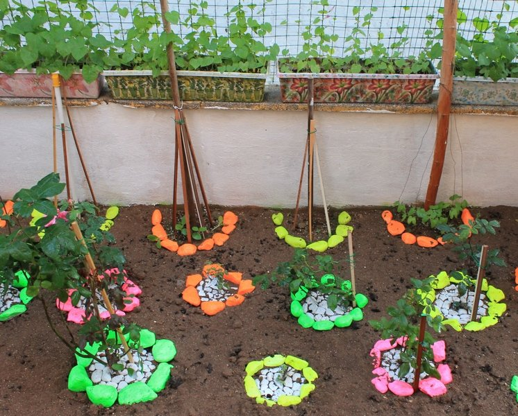 Сад и огород своими руками интересные идеи 170